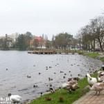 Choszczno. Promenada nad jeziorem