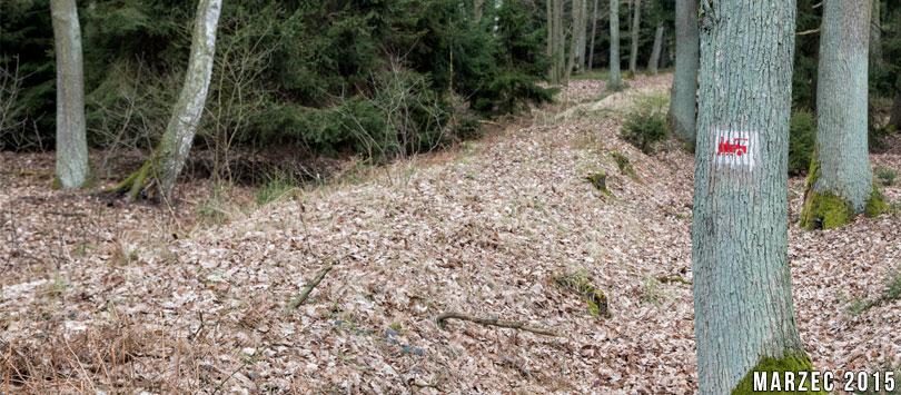 Grodziska kolejka leśna