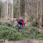 Trafiliśmy na ścinkę drzew