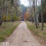 W drodze na Nakielno, gdzieś między Piławą a Wałczem Pierwszym