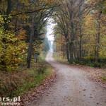 W drodze na Nakielno