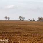 Krajobraz za Zdbowem