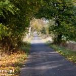 Droga Strzaliny – Zdbowo