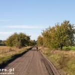 W drodze do Błociszewa czereśniową aleją