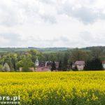 Widok na klasztor i dolinę Nysy Łużyckiej