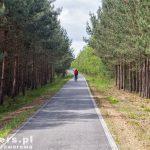 Droga rowerowa przed Nochten