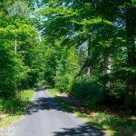 Trzebież – Drogoradz. Czarny szlak rowerowy – Szlak Parków i Pomników Przyrody