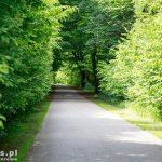 Droga Dobieszczyn – Stolec
