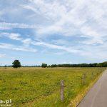 Rolniczy krajobraz