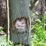 Znaczki szlaków na drzewach