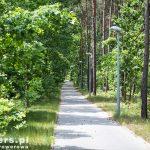 Droga pieszo-rowerowa do Rostarzewa