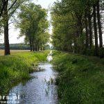 Środkowy kanał Obry