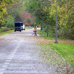 Wykaszanie poboczy i usuwanie liści