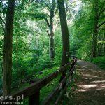 Ścieżka przyrodnicza nad Drawą