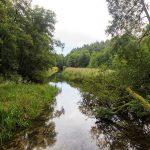 Przesmyk łączący jezioro Strzeszyn z jeziorem Kocie Południowe