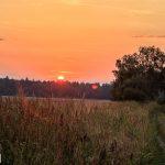 Skracamy drogę przez pola na Karścino