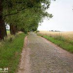 Brukowana droga na Konotop