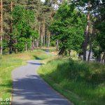 Droga rowerowa przez las do Uckermunde