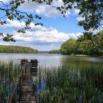 Jezioro Sarcz