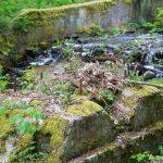 Pozostałości po młynie nad Bukówką
