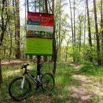 Wilcze Błoto – rezerwat przyrody ze zbiorowiskiem roślinności bagiennej i torfowiskowej