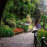 Parco grota – mały ogród botaniczny