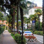 Palmowa ulica
