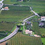 Żyzna ziemia doliny Sarca sprzyja uprawom i sadownictwu