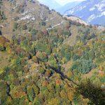 Widoki z tarasu widokowego przy Nino Pernici