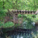 Była linia kolejowa Drawski Młyn – Wieleń