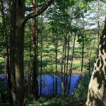 Tu rzeka Drawa na trym odcinku stanowi naturalną granicę między woj. Lubuskim a Wielkopolskim