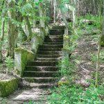 Schody do dawnego dworu Hansa Paasche