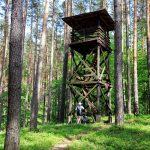Wieża widokowa w rezerwacie Torfowisko Linkowo