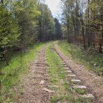 Linia kolejowa Wałcz – Złocieniec. Mamy nadzieję, że powróci tu ruch kolejowy