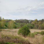 Górujący nasyp w dolinie Cieszynki