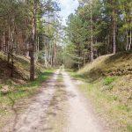 Czerwony szlak rowerowy z Wałcza do Ostrowca