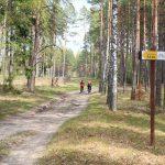 Na czerwonym szlaku rowerowym