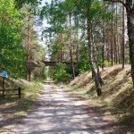 Na trasie byłej linii kolejowej z Zabrodzia w stronę Płytnicy