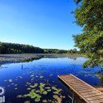 Puszcza Zielonka - Jezioro Zielonka