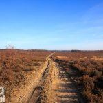 Powierzchnia rezerwatu ok 204 ha